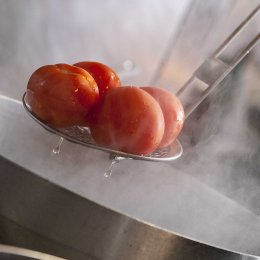 Tomatoes&Steam