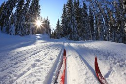 A well kept cross-country skiing track is just 2km away from the park of the Svartå Manor.